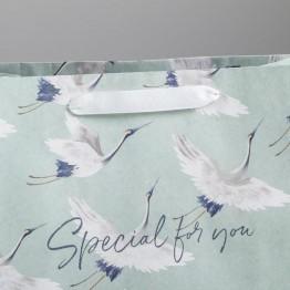 Пакет крафтовый горизонтальный Special for you, 27 х 23 х 11,5 см   4783264